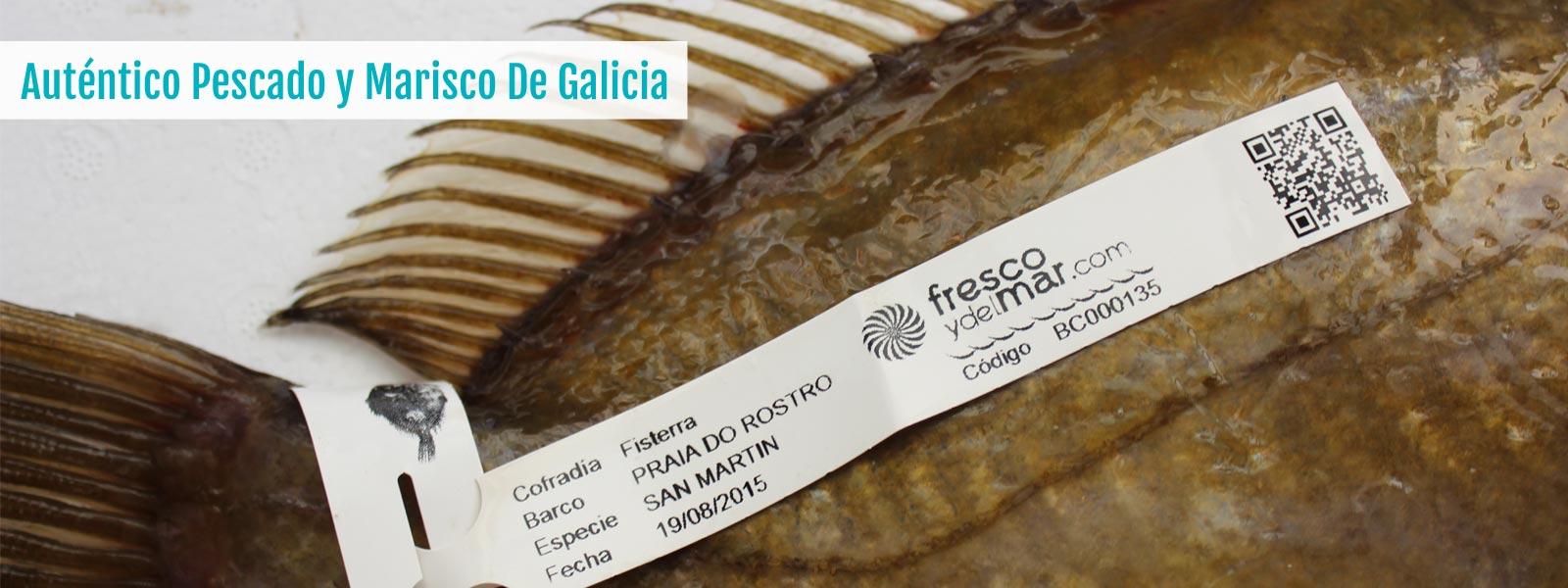 Autentico pescado y marisco gallego