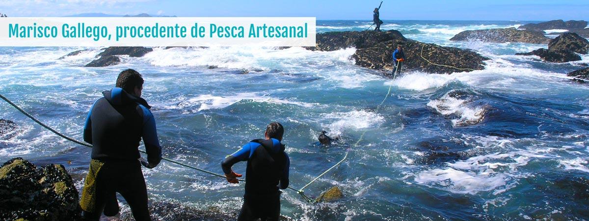Marisco y Pescado Gallego
