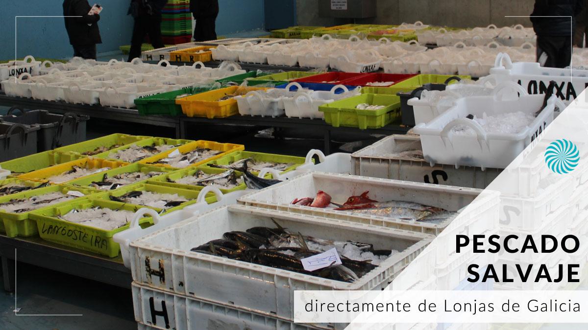 Comprar pescado fresco y salvaje a domicilio