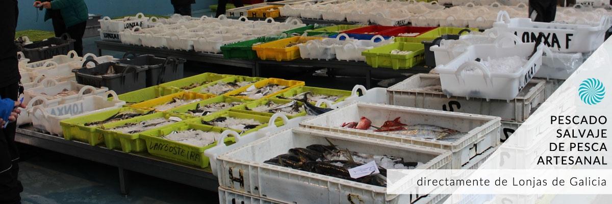 Comprar pescado fresco salvaje