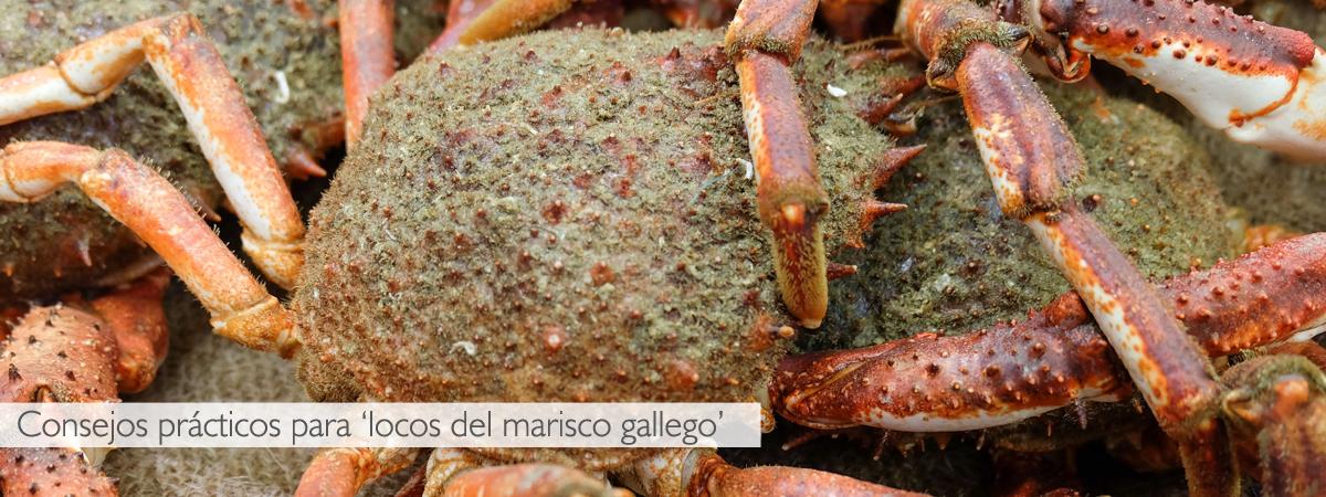 tiempos de coccion marisco gallego
